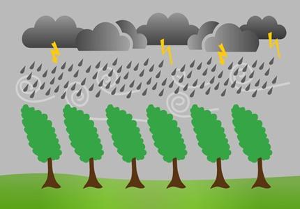 Chuva, vento forte e sensação térmica de frio - Das 18h de dia 24 até às 12h de dia 25 de Novembro