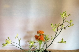 Workshops de Ikebana, Feng Shui e caligrafia japonesa no Museu do Oriente